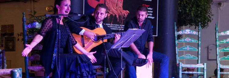 Flamenco dans, XXXIII Festival Flamenco, Manilva 2013
