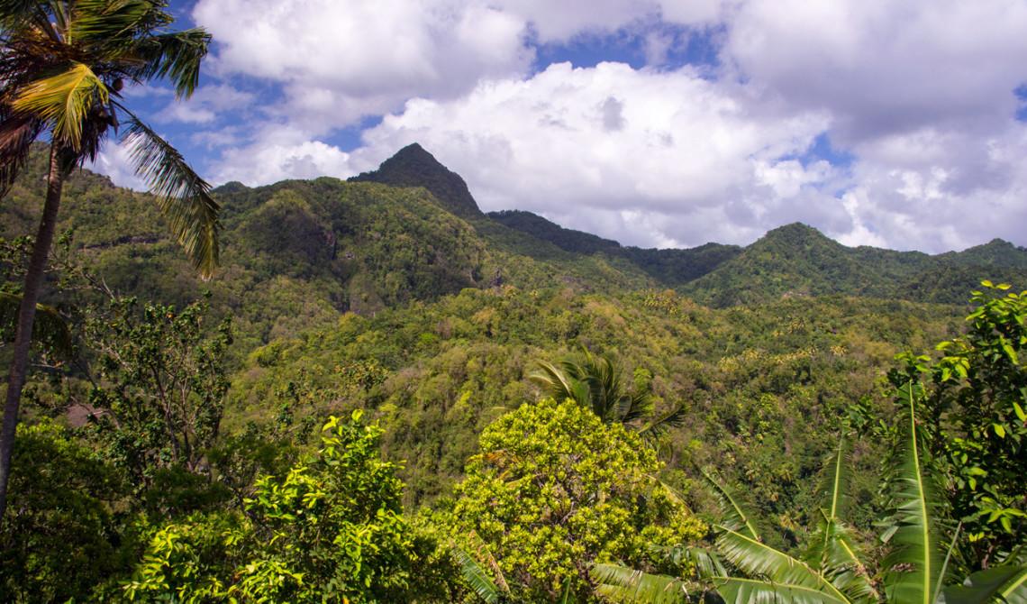 Vy från bilen på vår väg till nästa hotell på Saint Lucia