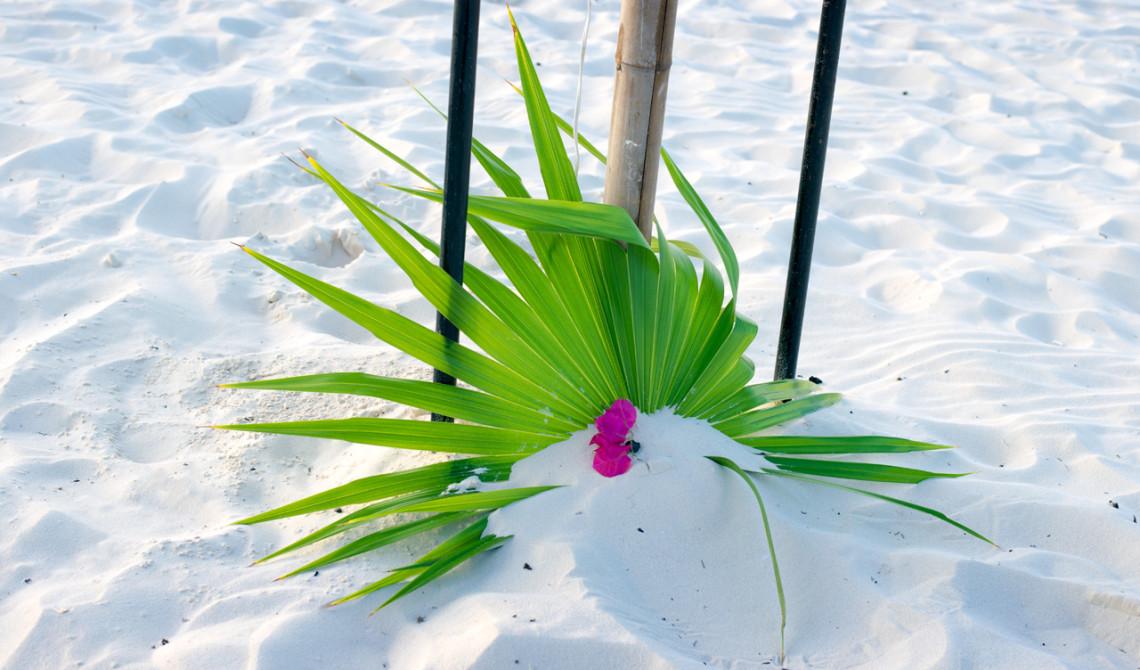 Vackra dekorationer runt om vår privata fördelsedagsmiddag på stranden till West Bay Club Resort, Turks & Caicos