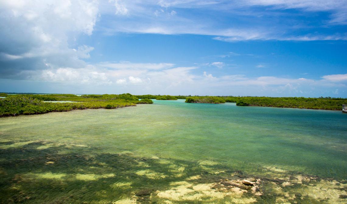 Underbara vyer längstmed vägbanken mellan North och Middle Caicos på Turks & Caicos