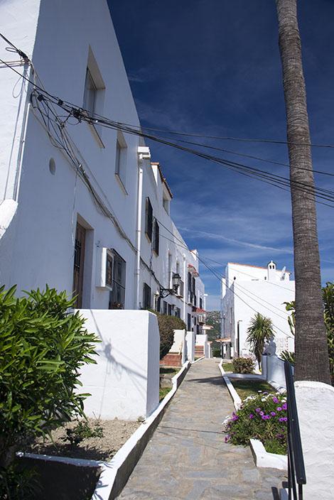 Monte Viñas
