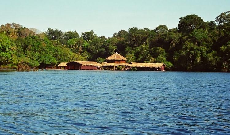 Morgon vid Amazon Lodge, sett från vattnet