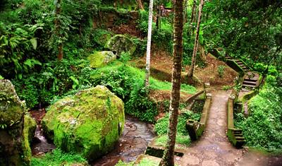 En liten stig som leder till Goa Gajan och Elefanttemplet, Bali