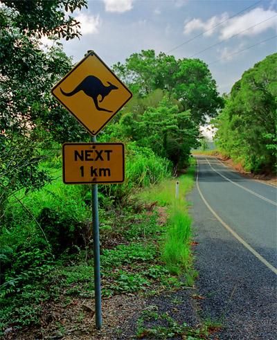 En skylt längs vägen som varnar för känguru