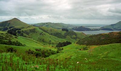 Vackra vyer längst vägen, Otago Peninsula