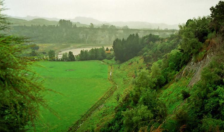 Vy på vår väg mellan Wellington och Tongariro