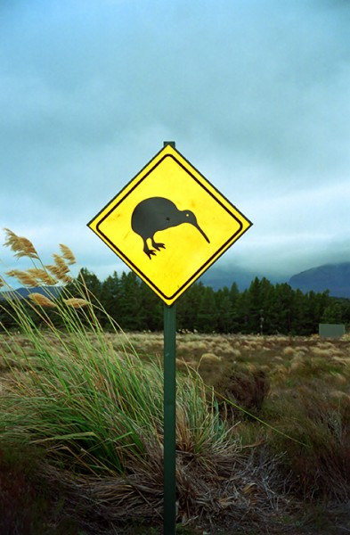 Kiwi vägskyld, Nya Zeeland