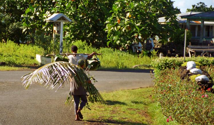 Far och son bär jobbar, Avao Samoa
