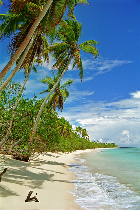 Paradisstrand i söderhavet på ön Uoleva på Tonga