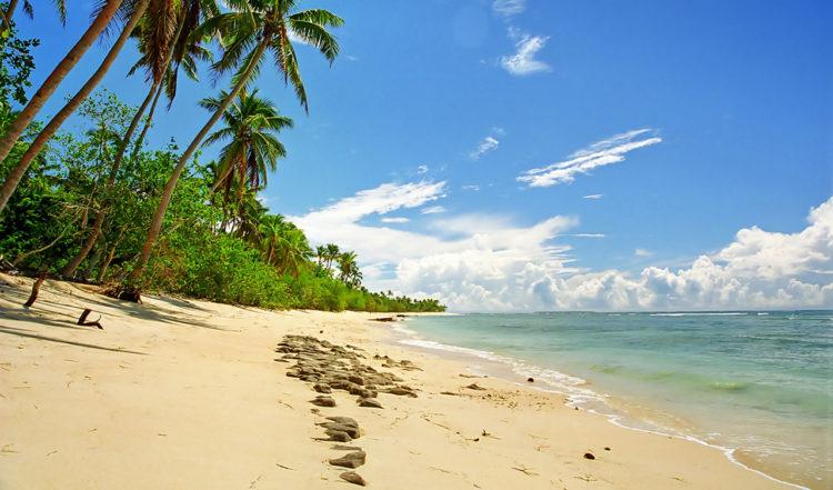 Paradisstrand vid ön Uoleva på Tonga