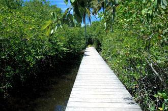 Den lilla bron leder oss fram till stranden