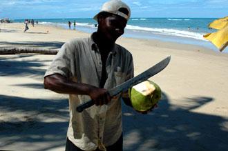 Försäljaren av de goda kalla kokosnötterna