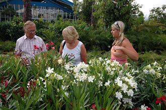 Garden Center norr om Estepona har stort utbud av allt som hör trädgård, blommor och växter till.