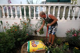 Lasse påbörjar plantering av nya växter i trädgården