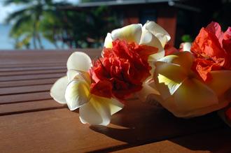 Blommorna i fokus på vår mysiga veranda