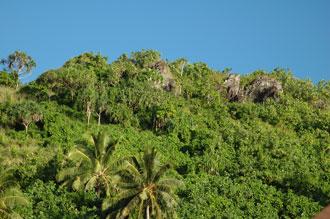 Öns natur