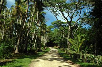 Vy - Atiu, Cook öarna
