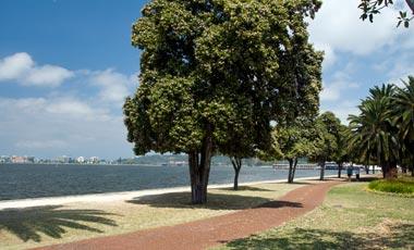 Swan River i Perth