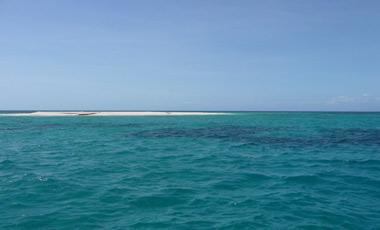 Vy ifrån båten, vid snorkling i barriärrevet med Ocean Safari Tour