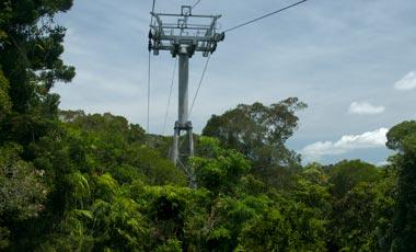 Skyrail rainforest cableway, Från Barron falls mot Red Peak