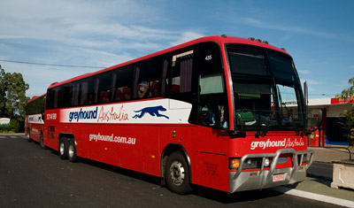 Greyhoundbuss