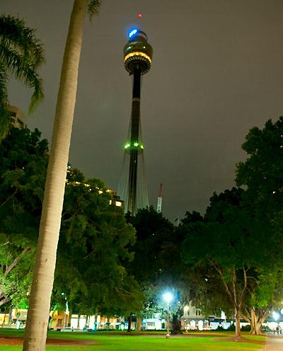 Sydney Tower sett från Hyde Park