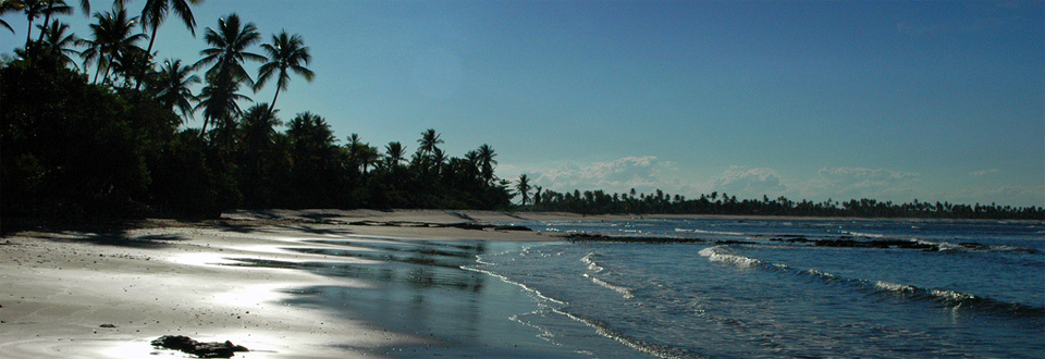 Boipeba Bahia Brasilien