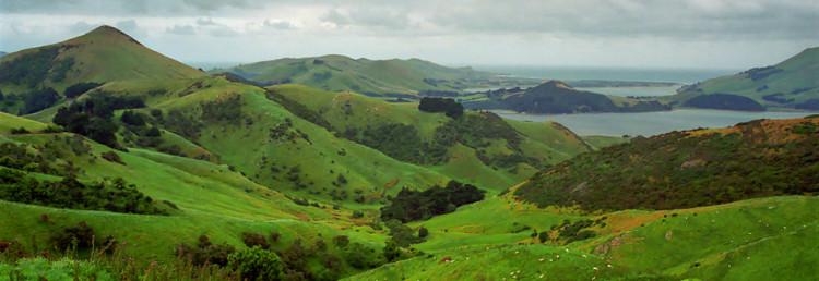 Dunedin och Otago Peninsula, Nya Zeeland