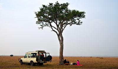 Frukost i det vilda Masai Mara, Kenya