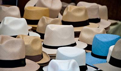 Panama hattar, Estepona marknad