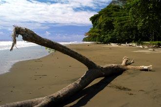 Bahia Ballena, Costa Rica