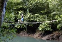 Hängbro, Costa Rica