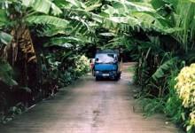 La Digue, Seychellerna