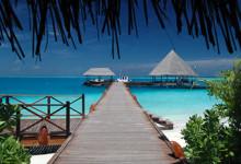 Vilu Reef, Maldiverna
