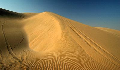 Sanddyner utanför Sealine Beach Resort, Qatar
