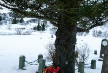 Þingvellir kyrkogård, Tingvalla Island