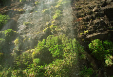 Vackert vattenfall, Milford Sound