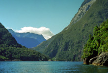 Vacker grön natur i Milford Sound