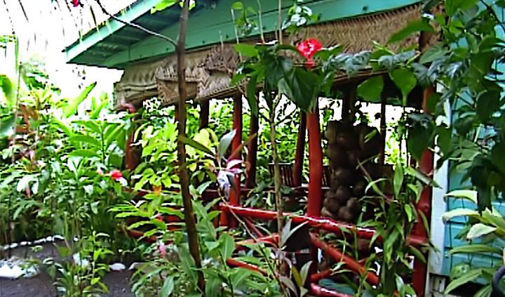 Seipepa reception, Apia Samoa