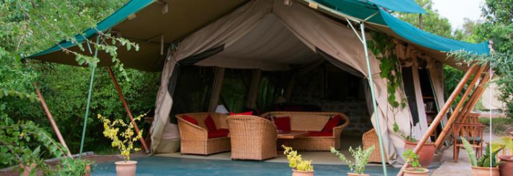 Tält med baren i JK Mara Camp, Masai Mara Kenya
