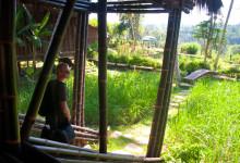 Bambu Indah från huvudbyggnaden, Ubud Bali