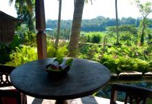 Utsikt från terassen på Padi House, Bambu Indah Ubud Bali