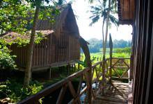 Utsikt från en balkong från badrummet, Padi House Bambu Indah Ubud Bali