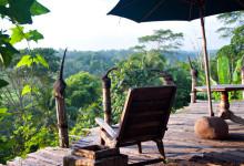 En underbar plats för utsikt över risfälten vid Bambu Indah, Ubud Bali
