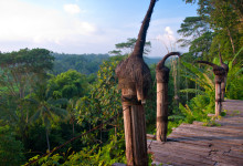 Vy från utsiktsplatsen på Bambu Indah, Ubud Bali