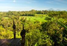 Utsikt från Bambu Indah över risfälten på andra sidan Ayung floden, Ubud