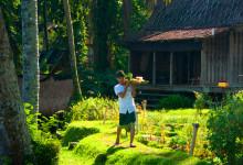 Frukost på väg till utsiktsplatsen, Bambu Indah Ubud