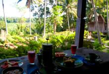 På Padi House veranda vid frukost, Bambu Indah, Ubud