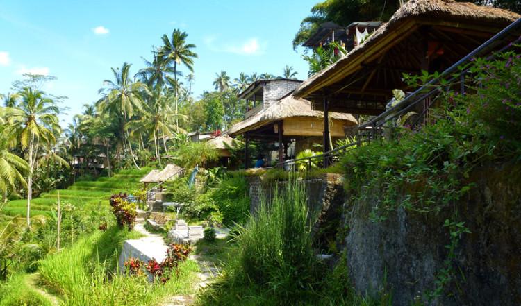 Byggnader utmed Tegallantang risterasser, Bali