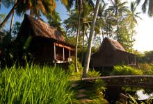 Sen eftermiddag vid Padi House och omgivningarna, Bambu Indah, Ubud